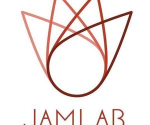 Civic Tech Innovation Network and JamLab seeking journalist