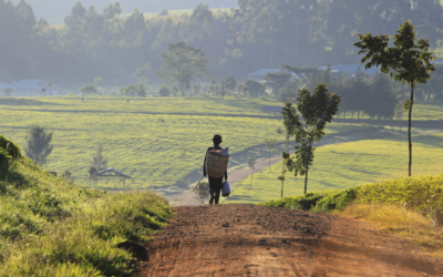 Reporting Rural Poverty and Agricultural Development