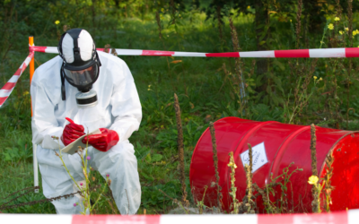 Call for applications:  Grants to investigate environmental crimes in Africa